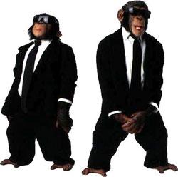 Majmuni -%201045%20-%20MAJMUNI%20EVROVIZIJA